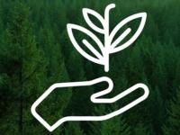 Экотехнопарк «Шиес»: вопросы и ответы