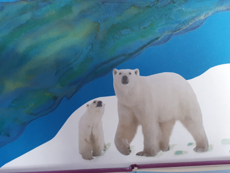 «Загадки Арктики» к международному дню белого медведя.